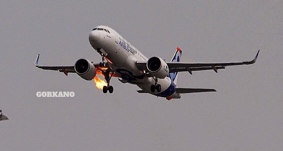 Choc aviaire pour l'A320neo équipé de PW1100G