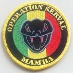 """Opération """"Serval"""""""