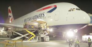 Rhino A380