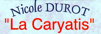 La Caryatis ou la trapéziste de l'extrême .