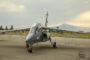 Un guépard chez Airbus